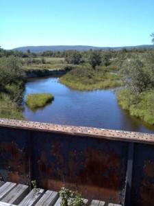 Pre Ronde Creek from the railway bridge