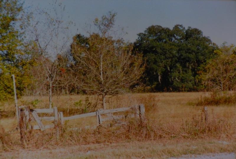 old cypress gate, 1800s sugar cane farm on Bayou Teche