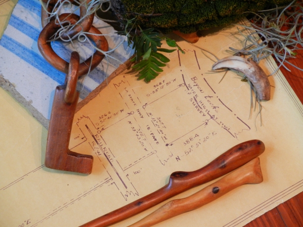 survey map, cedar & oak chopsticks, pecan chain, crockery shard, and a nutria claw